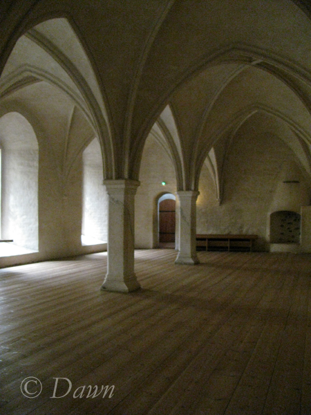 Turku Castle and the star-vaulted ceilings